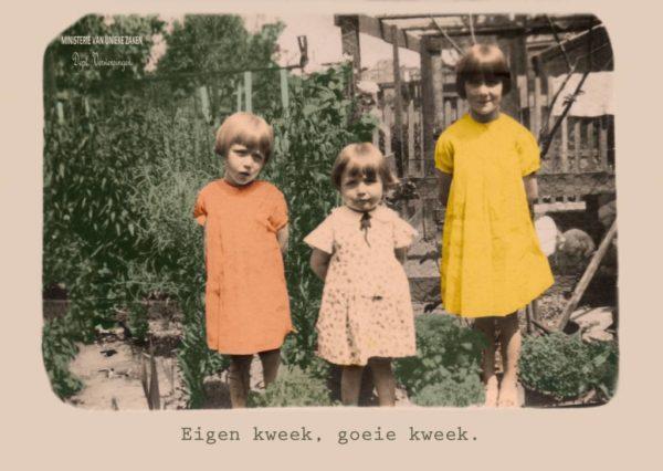 171-eigen-kweek-4.jpeg