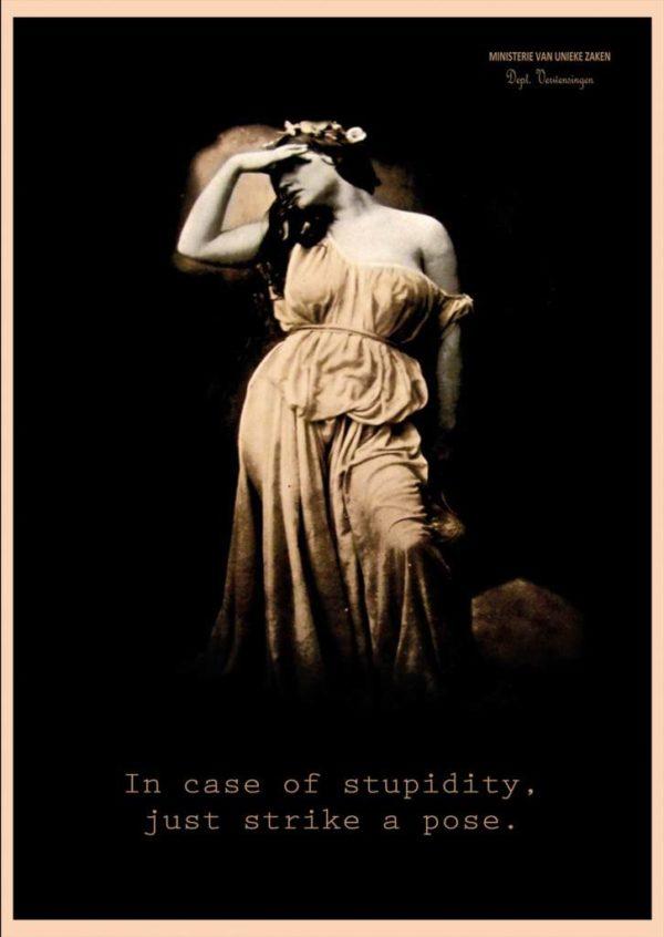 238-recto-stupidity-3.jpeg